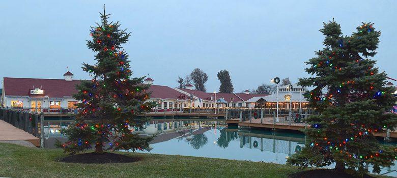 Christmas trees at Harbor Light Landing in Port Clinton