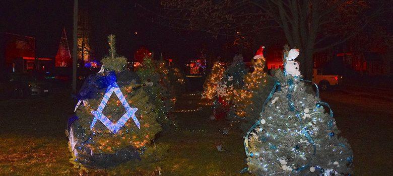 Image of Christmas trees with Christmas lights on
