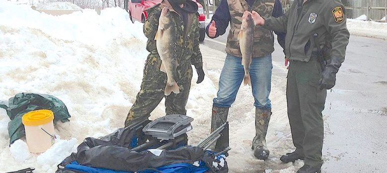 Image of fishermen with caught walleye