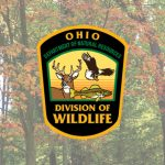 Ohio begins gun hunting seasons for deer
