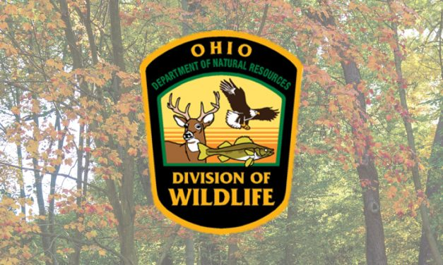 HuntFishOH app now available from Division of Wildlife