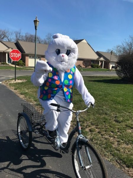 Easter Bunny Visiting Otterbein