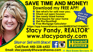 Stacy Pandy ad