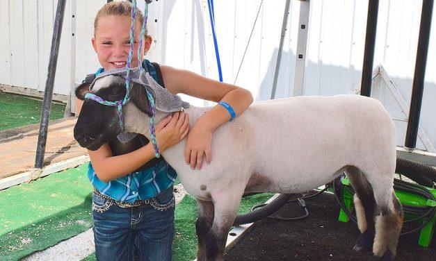 Ottawa County Fair has lots to celebrate next week