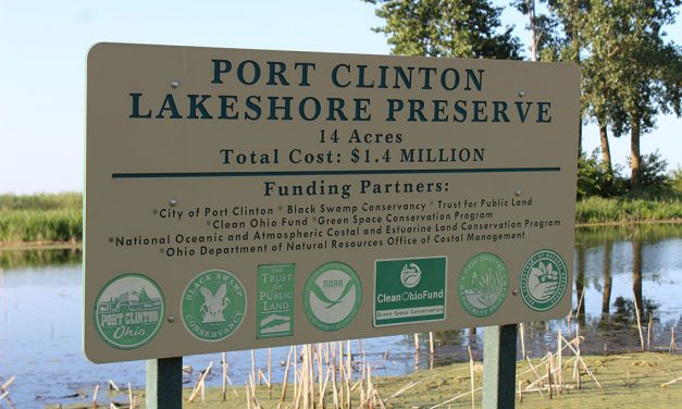 H2Ohio to spend $5 million to boost local wetlands