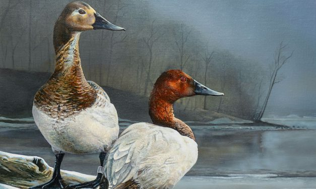 Ohio artist wins Wetlands Habitat Stamp Competition