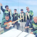 Drift and cast or troll, Lake Erie walleye are biting