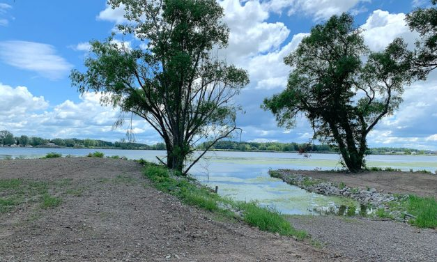 FONWR improving access to trio of new preserves around Port Clinton