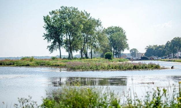 Lakeshore Preserve a Classroom for Tomorrow; Environmental, ecological wetlands lessons abound in urban setting